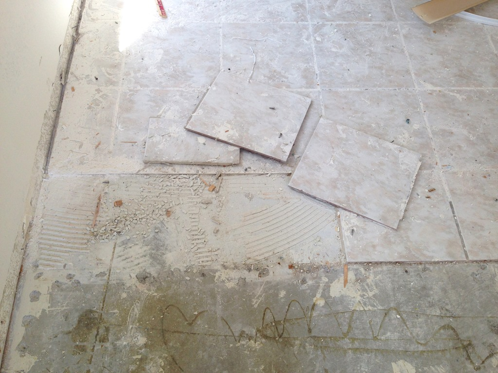 Tile removal burleigh heads totally stripped for Floor tile design tool